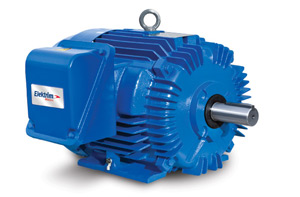 Elektrim NEMA Premium All-Purpose Series Electric Motors