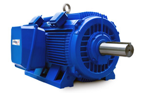 Elektrim Crusher Duty Electric Motors