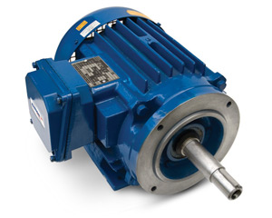 Elektrim JM & JP Close Coupled Pump Electric Motors