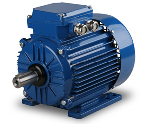 Elektrim Metric IEC AC Electric Motors